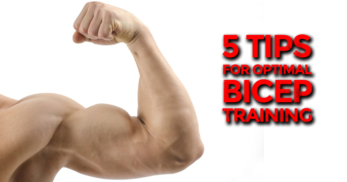 5 Tips for Optimal Bicep Training