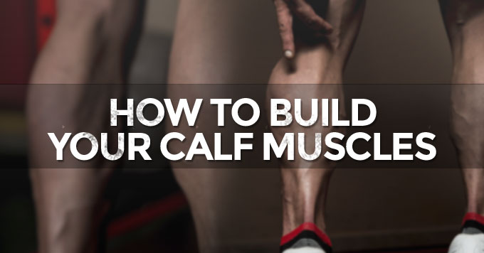 how-to-build-your-calf-muscles